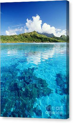 French Polynesia, View Canvas Print by Joe Carini - Printscapes