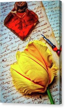 French Tulip On Old Letters Canvas Print by Garry Gay