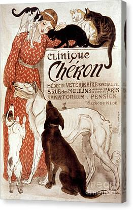 Aodng Canvas Print - French Veterinary Clinic by Granger
