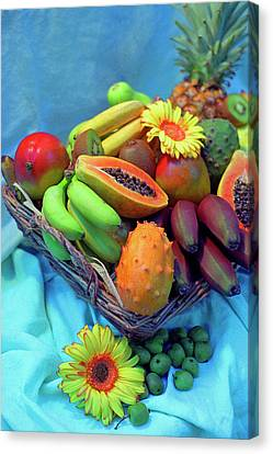 Cherimoya Canvas Print - Fresca by Carole Gordon