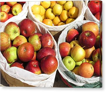 Fresh Apple Canvas Print by Alfred Ng