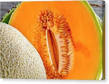Fresh Cantaloupe Melon Canvas Print by Teri Virbickis