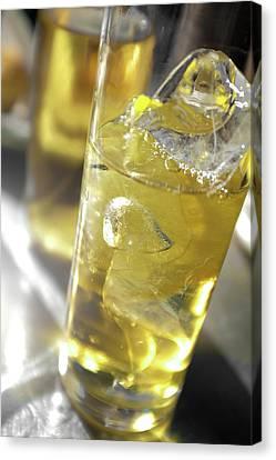 Fresh Drink With Lemon Canvas Print by Carlos Caetano