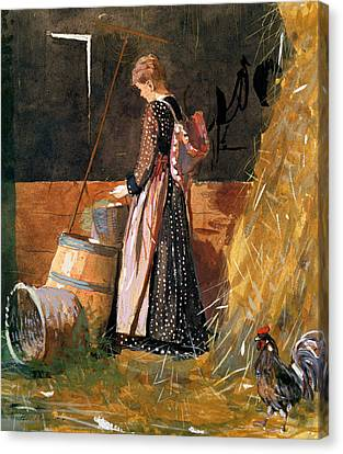 Fresh Eggs Canvas Print by Winslow Homer