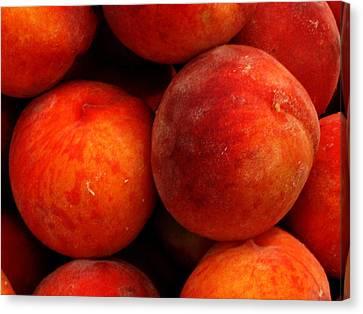Fresh Fuzzy Peaches Canvas Print by Ian  MacDonald