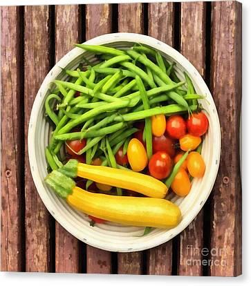 Fresh Garden Veggies Canvas Print by Edward Fielding