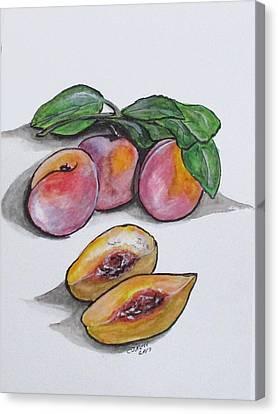 Fresh Peaches Canvas Print