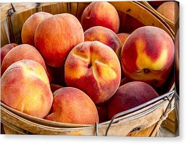 Locally Grown Canvas Print - Fresh Peaches by Teri Virbickis