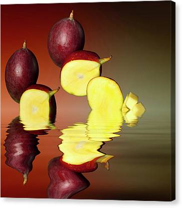 Fresh Ripe Mango Fruits Canvas Print