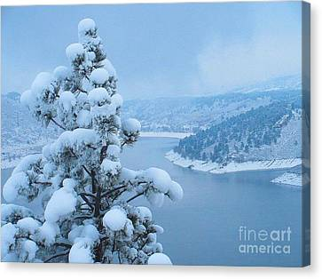 Fresh Snow Canvas Print by Jeffrey Birr