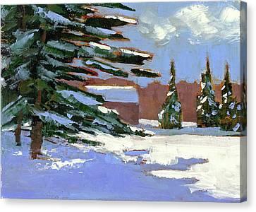 Fresh Snow Canvas Print by Mary Byrom