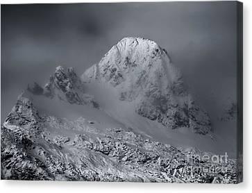 Fresh Snow Canvas Print by Mike Dawson