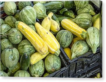 Fresh Squash At The Market Canvas Print by Teri Virbickis