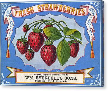 Fresh Strawberries Fruit Label Canvas Print by Edward Fielding