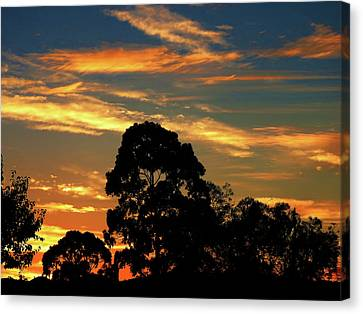 Canvas Print featuring the photograph Fresh Sunrise by Mark Blauhoefer
