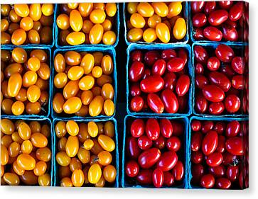 Fresh Tomatoes Canvas Print by S R Shilling