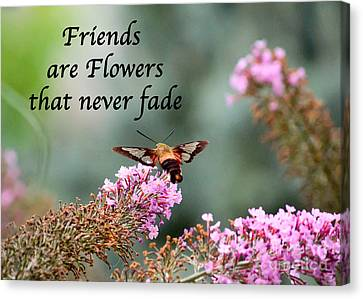 Friends Are Flowers That Never Fade Canvas Print by Kerri Farley