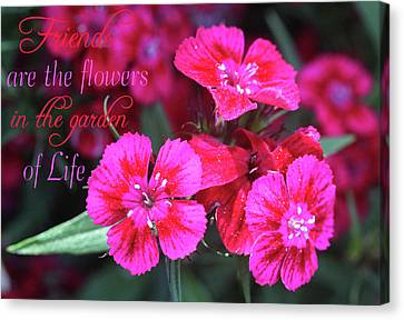 Canvas Print featuring the photograph Friends Are The Flowers by Trina Ansel