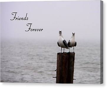 Friends Forever Canvas Print