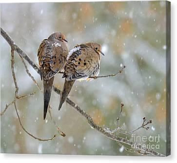 Friends Through The Storm Canvas Print