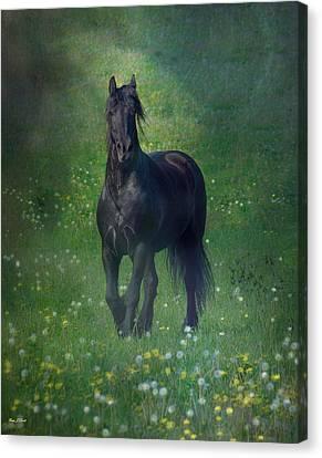Horse Artwork Canvas Print - Friesian Mist by Fran J Scott