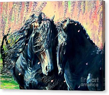 A Friesian Romance Canvas Print
