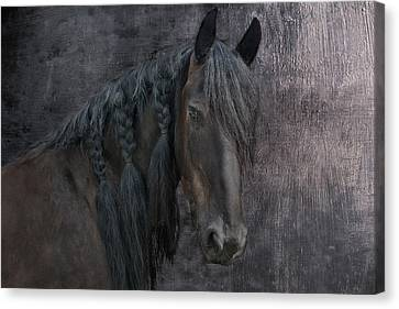 Frisian Girl Canvas Print