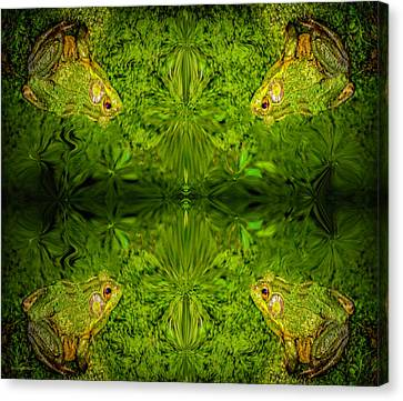 Amphibians Canvas Print - Frog Dimensions by LeeAnn McLaneGoetz McLaneGoetzStudioLLCcom
