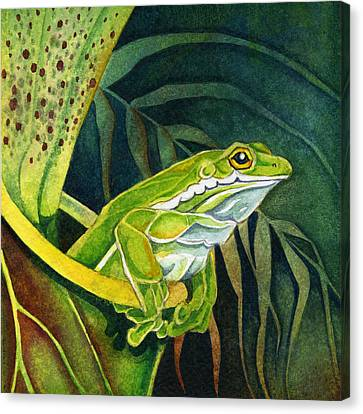 Frog In Pitcher Plant Canvas Print by Lyse Anthony