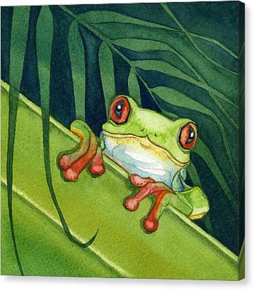 Frog Peek Canvas Print by Lyse Anthony