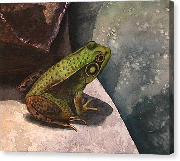 Frog Canvas Print by Sharon Farber