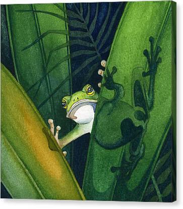 Frog Small Peek Canvas Print by Lyse Anthony