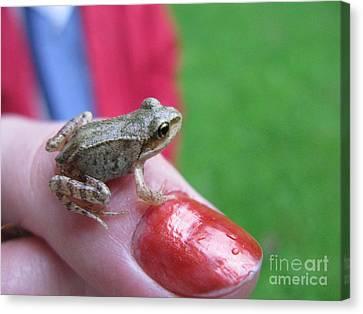 Canvas Print featuring the photograph Frog The Prince by Ausra Huntington nee Paulauskaite