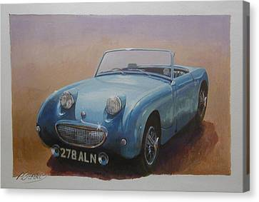 Frogeye  Canvas Print by Mike  Jeffries