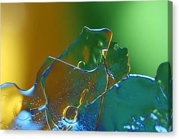 Frogger Canvas Print by Rachelle Johnston