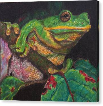 Canvas Print featuring the painting Froggie by Karen Ilari