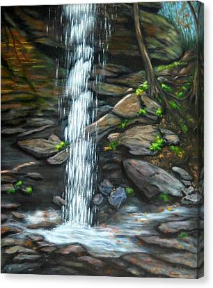 From Behind Moore Cove Falls Canvas Print by Sandy Hemmer