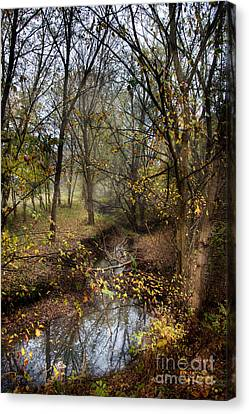 From Snow That Melted Only Yesterday Canvas Print by William Fields