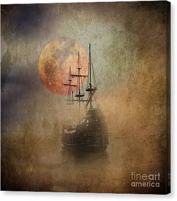 From The Darkness Canvas Print by Barbara Dudzinska