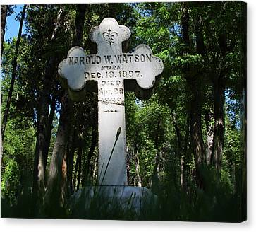 From The Grave No4 Canvas Print by Peter Piatt