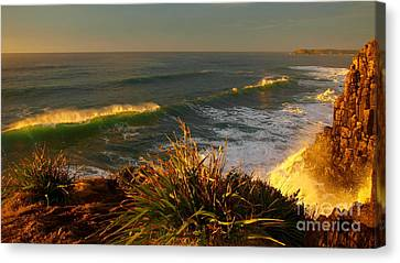 From The Headland Canvas Print