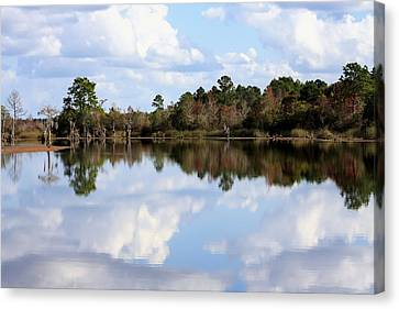 From The Lake To The Channel  Canvas Print by Debra Forand