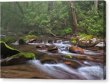 From The Mist - Oconaluftee River Canvas Print