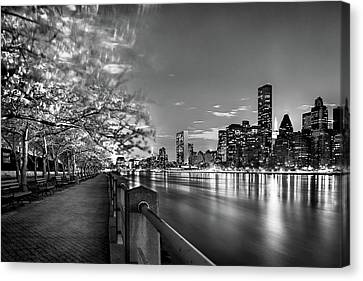 Front Row Roosevelt Island Canvas Print