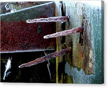 Frost And Rust Canvas Print