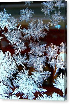 Frost Design Canvas Print by Shirley Sirois