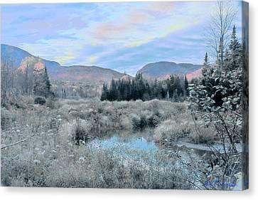 Frost On The Bogs Canvas Print