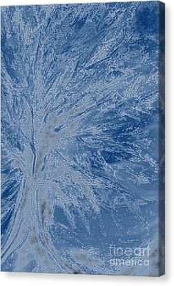 Winter Storm Canvas Print - Frost Tree By Jrr by First Star Art