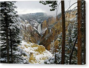 Canvas Print featuring the photograph Frosted Canyon by Steve Stuller