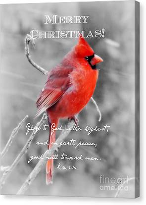 Wildlife Celebration Canvas Print - Frosted - Christmas by Anita Faye